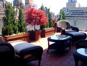 Amber Freda NYC Garden Design