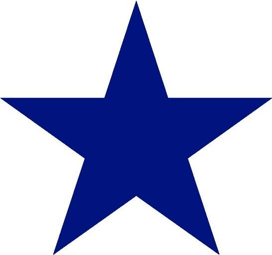 Blue_Star_for_Custom_Favorites.jpg
