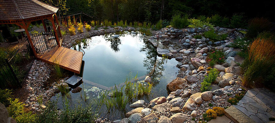 Trends: Ready to Build a Natural Swimming Pool? Your Clients Are.