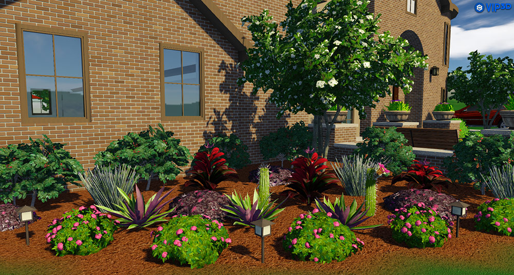 New Plants