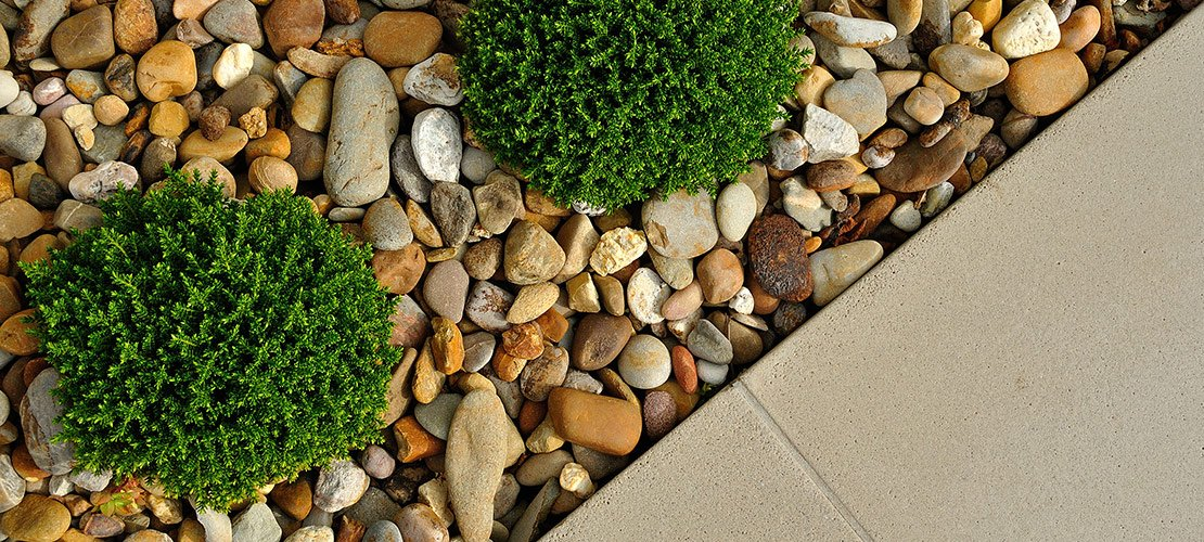 7 Residential Landscaping Design Trends Your Clients Want